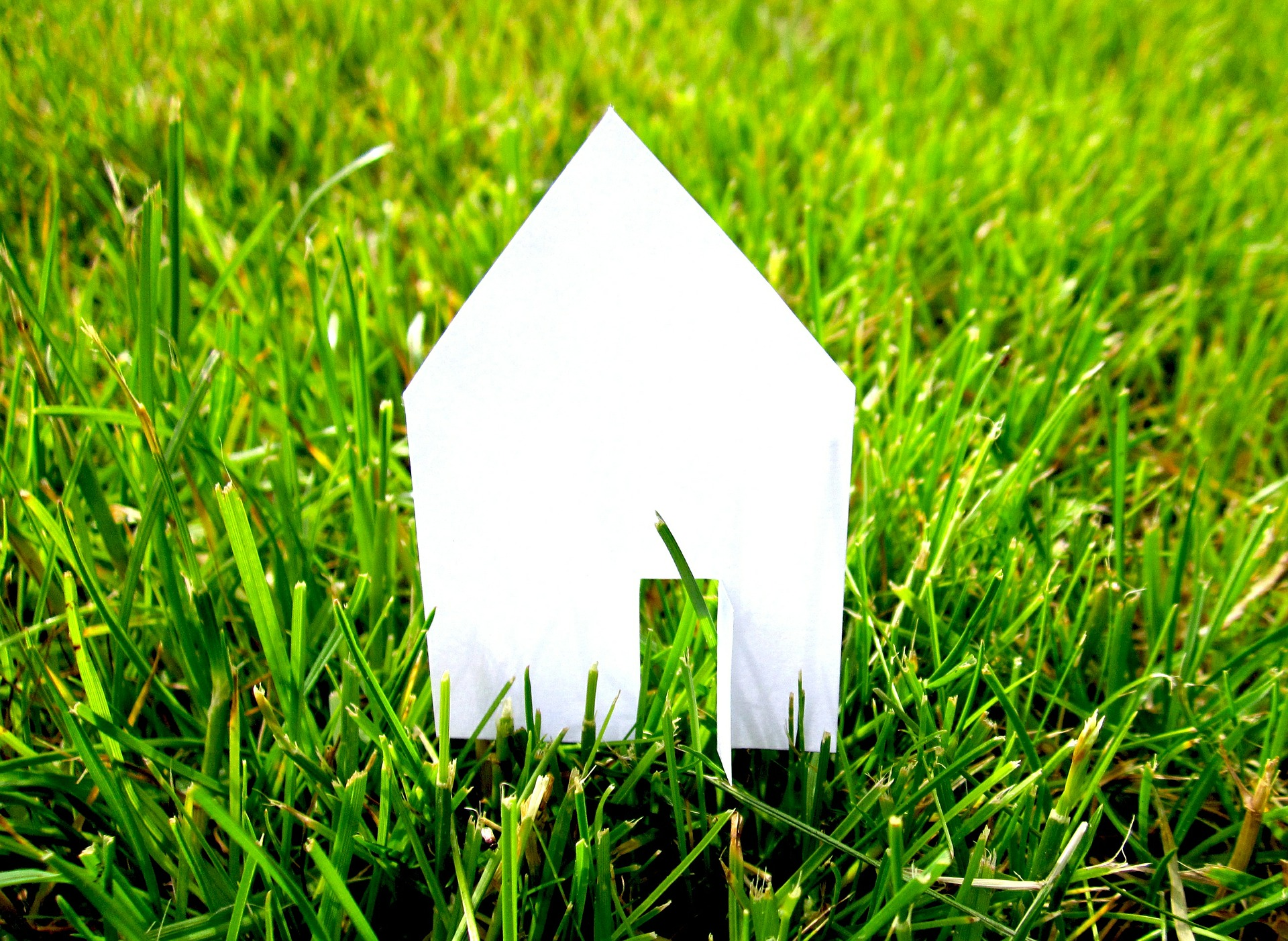 Paper House On Grass